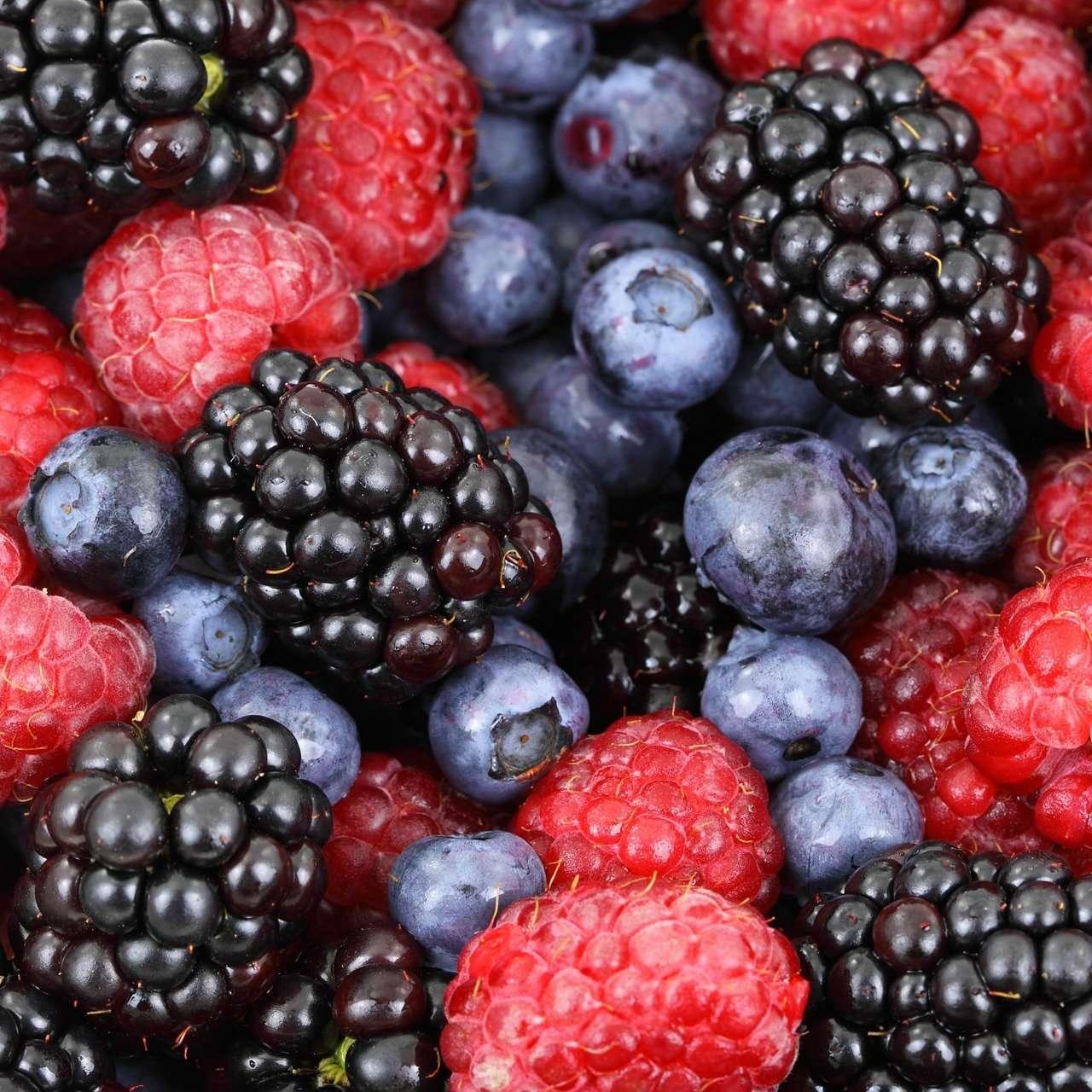 berries-2277_1920